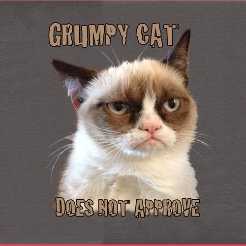Grumpy Cat Does Not Approve