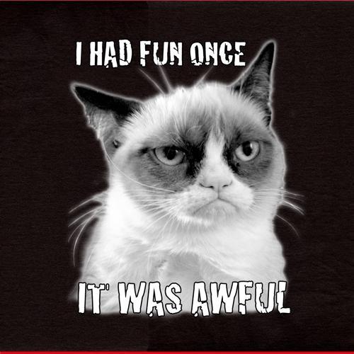 Grumpy Cat Had Fun