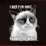 Grumpy Cat Had Fun